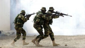 Senegalese troops move in on the Gambia